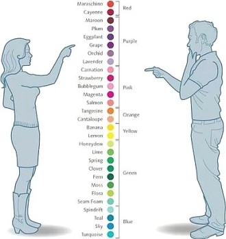 Color preferences by gender